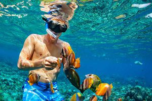 Koh Tan Snorkeling